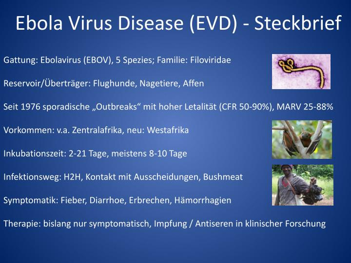Ebola Virus Disease (EVD) - Steckbrief