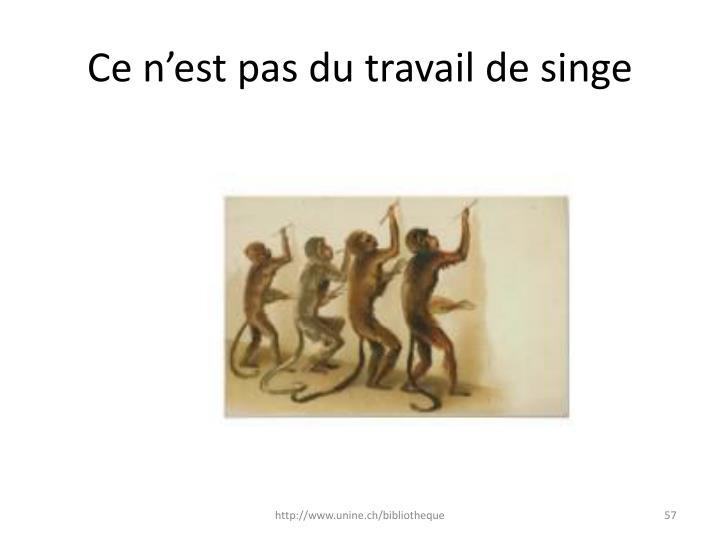 Ce n'est pas du travail de singe