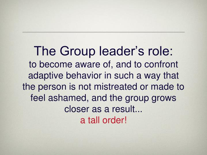 The Group leader's role: