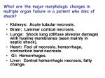 what are the major morphologic changes in multiple organ failure in a patient who dies of shock