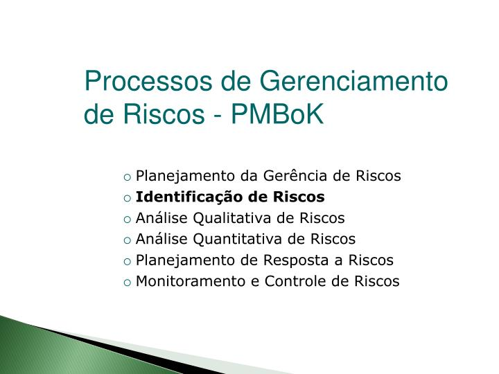 Processos de Gerenciamento de Riscos - PMBoK