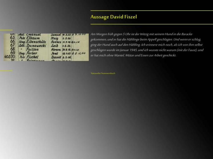 Aussage David Fiszel