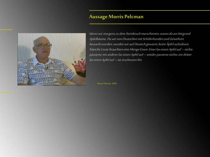 Aussage Morris Pelcman