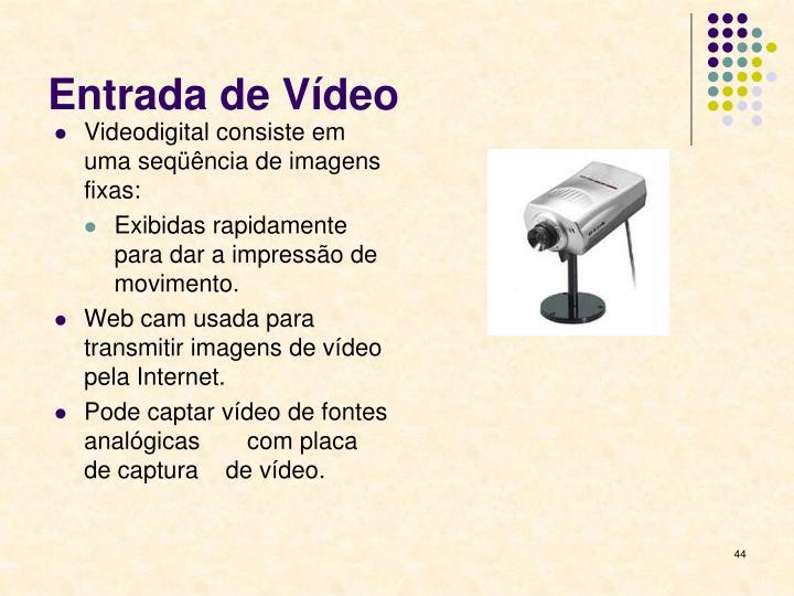 Entrada de Vídeo