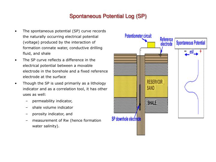 Spontaneous Potential Log (SP)