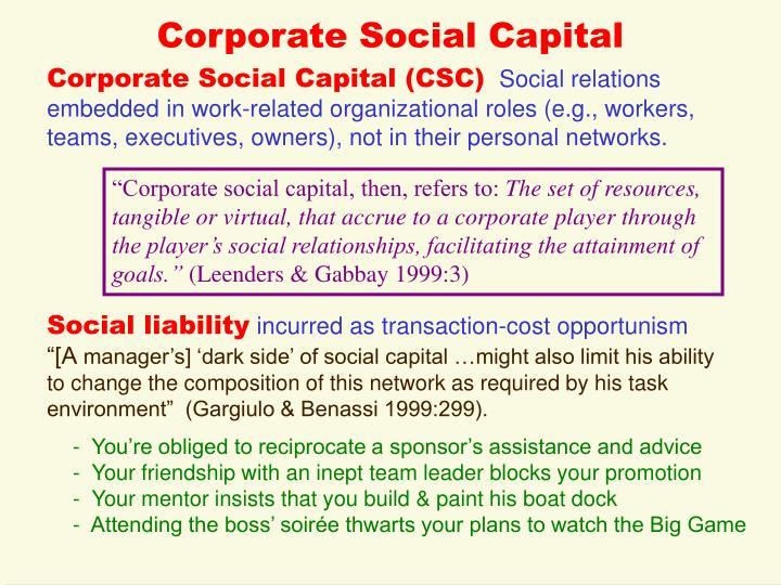 Corporate Social Capital