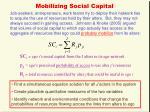 mobilizing social capital