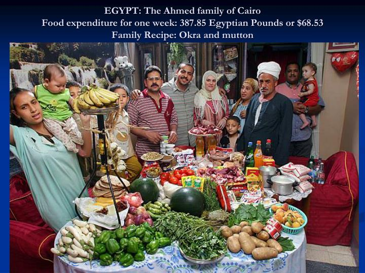 EGYPT: The Ahmed family of Cairo