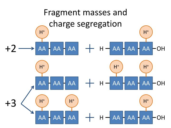 Fragment masses and