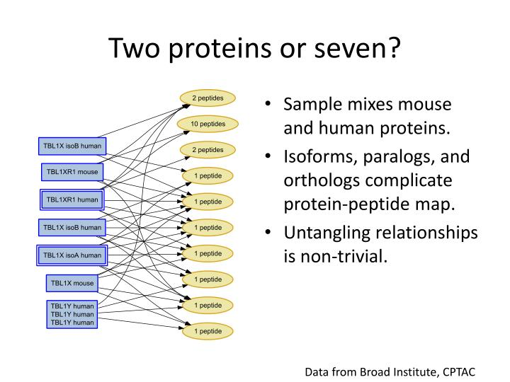 Two proteins or seven?