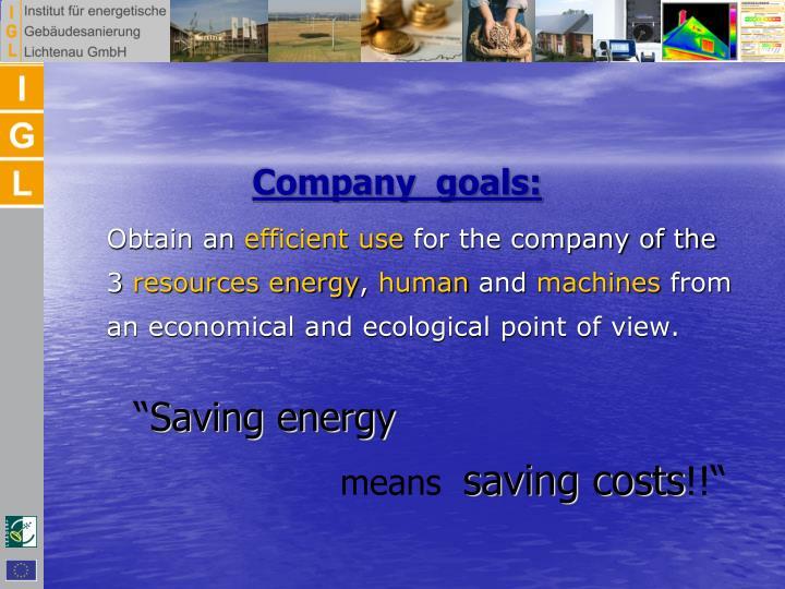 Company  goals:
