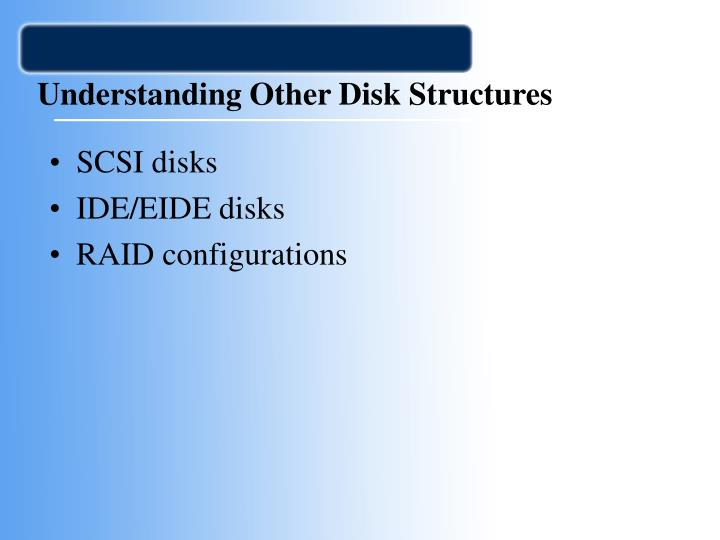 Understanding Other Disk Structures