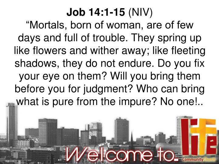 Job 14:1-15