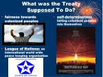 what was the treaty supposed to do1