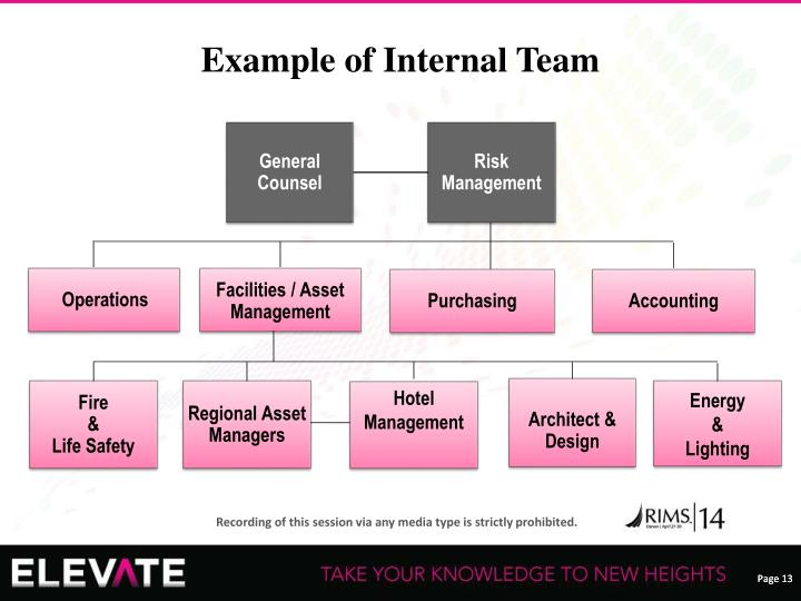 Example of Internal Team