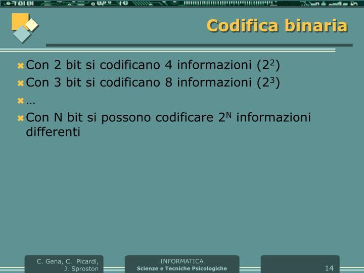 Codifica binaria