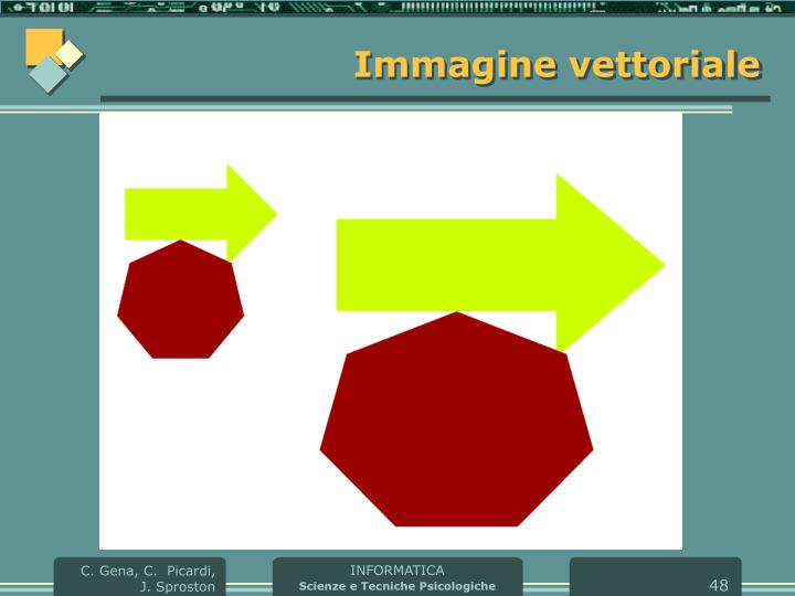 Immagine vettoriale