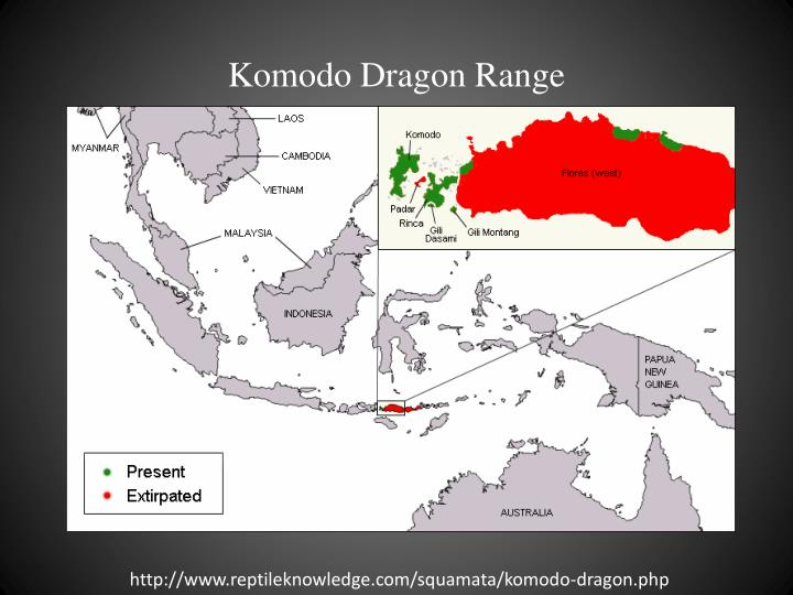 Komodo Dragon Range