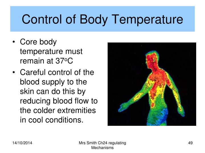 Control of Body Temperature