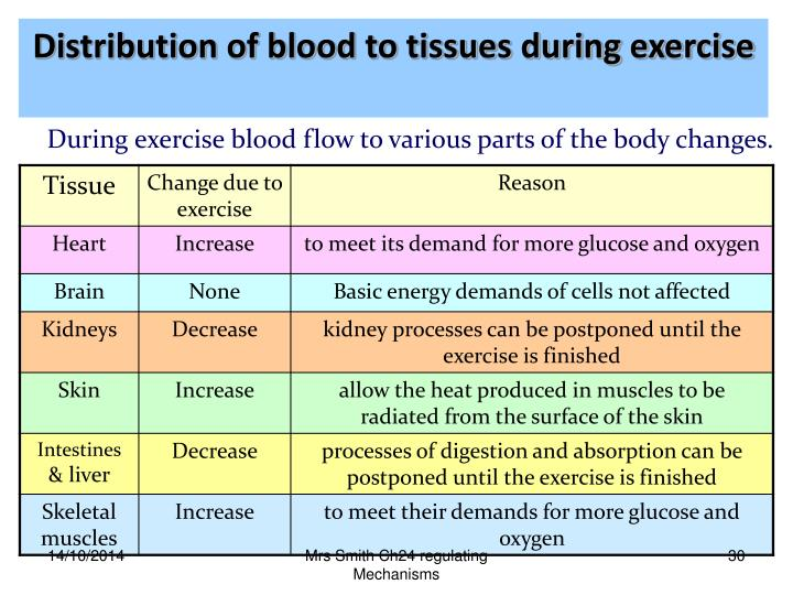 Distribution of blood to tissues during exercise