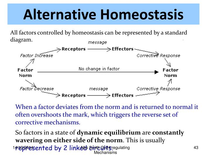 Alternative Homeostasis