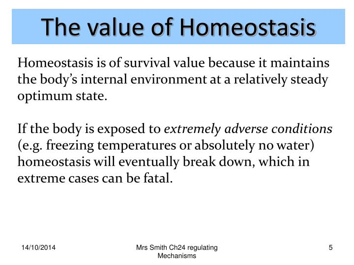 The value of Homeostasis