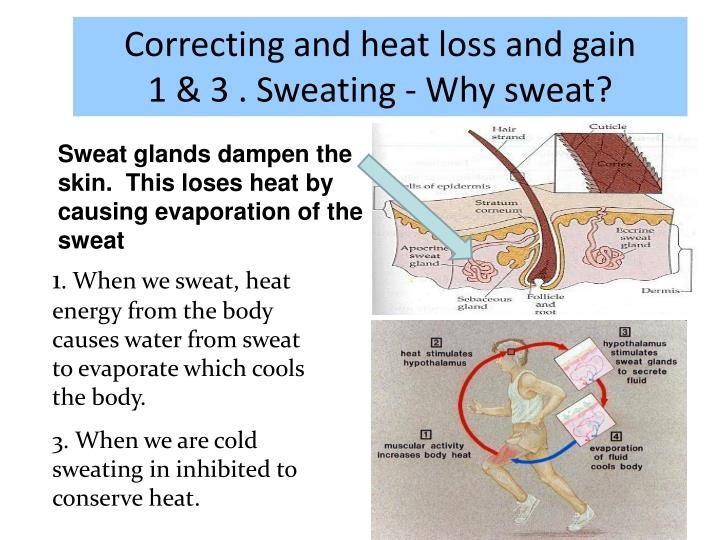 Correcting and heat loss and gain