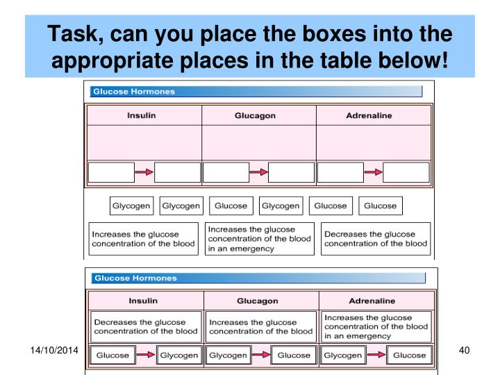Task, can you place the boxes into the appropriate places in the table below!