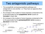 two antagonistic pathways