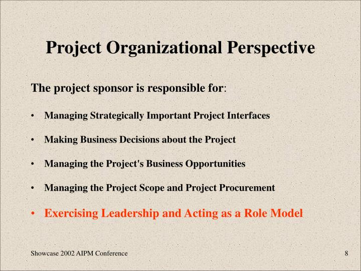 Project Organizational Perspective
