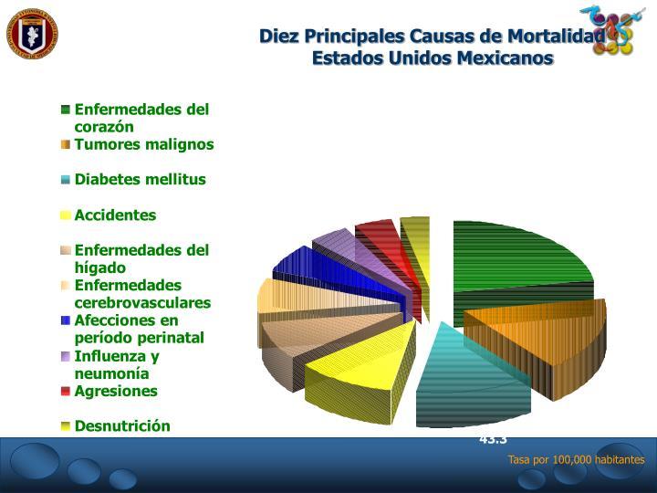 Diez Principales Causas de Mortalidad