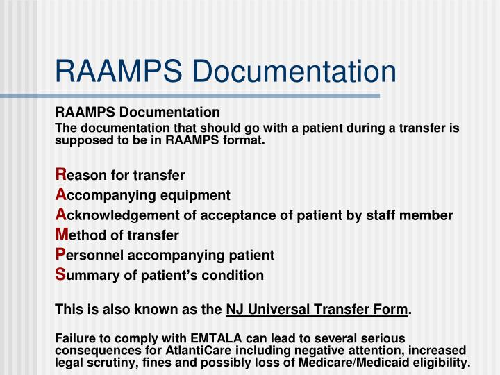RAAMPS Documentation