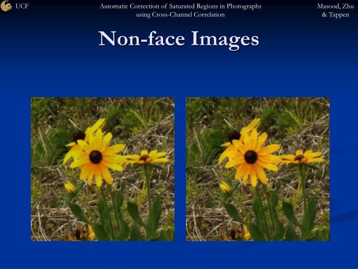 Non-face Images