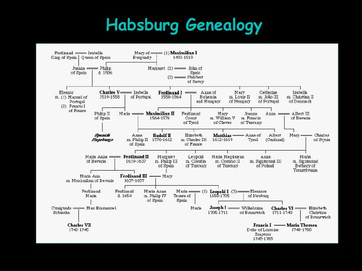 Habsburg Genealogy