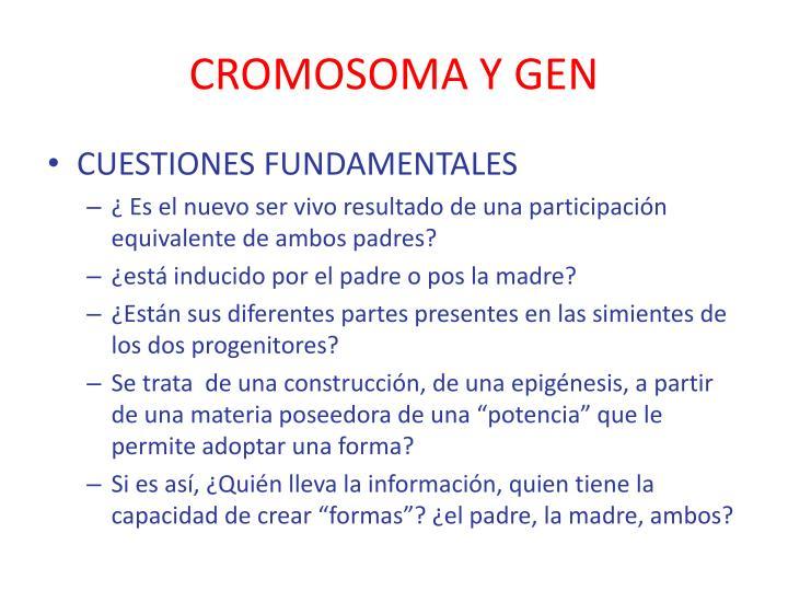 CROMOSOMA Y GEN