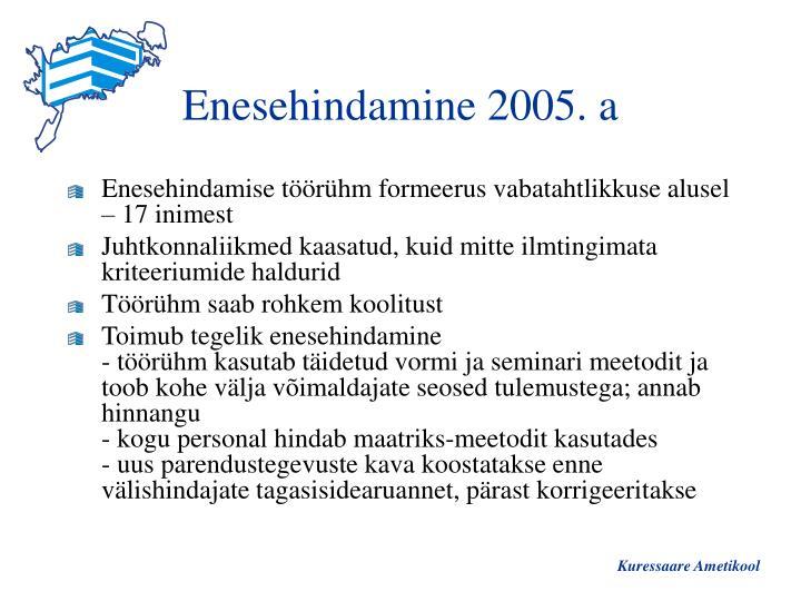 Enesehindamine 2005. a
