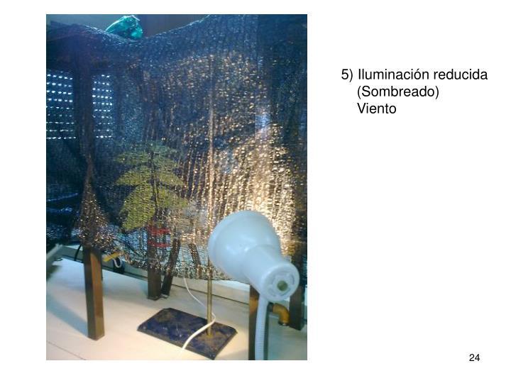 5) Iluminación reducida