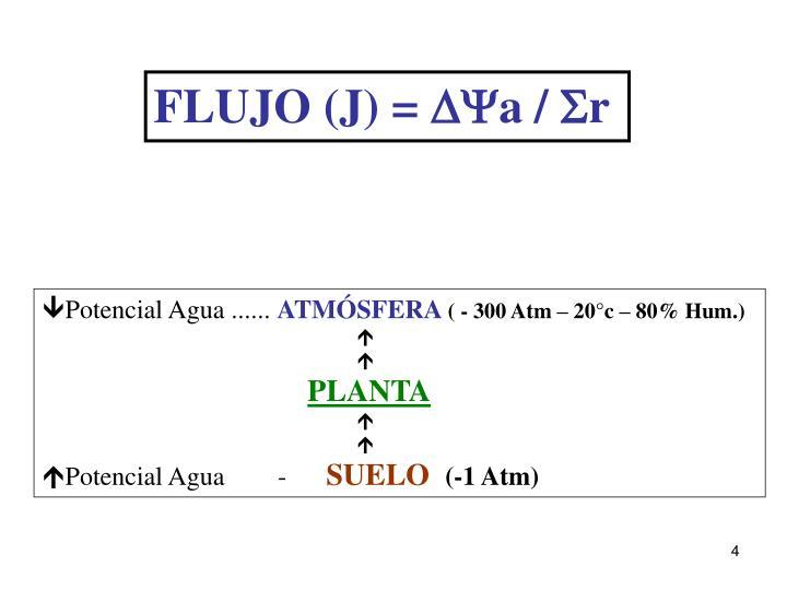 FLUJO (J) =