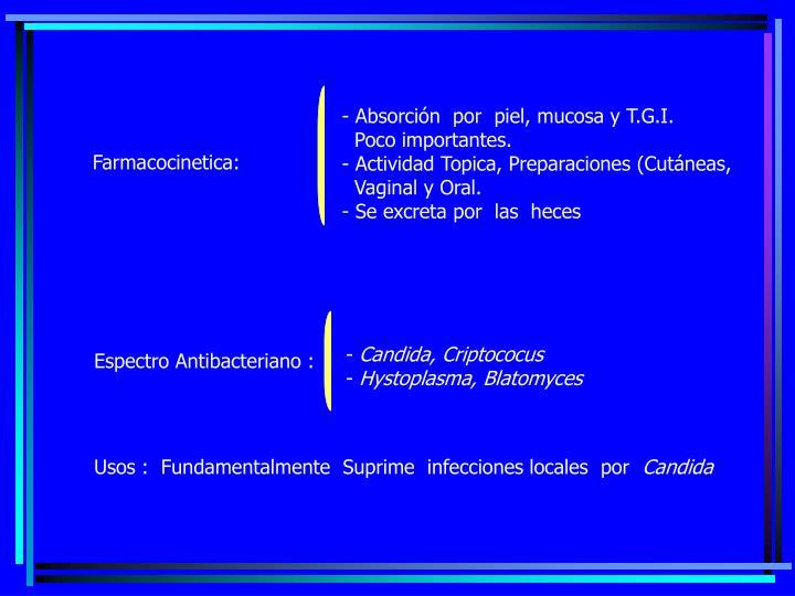 - Absorción  por  piel, mucosa y T.G.I.