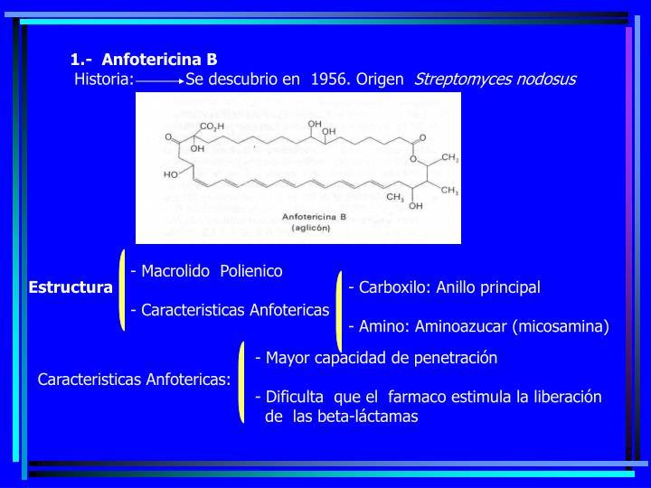 1.-  Anfotericina B