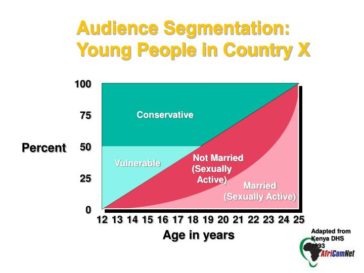 Audience Segmentation: