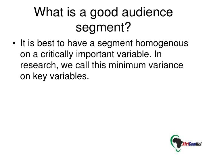 What is a good audience segment?