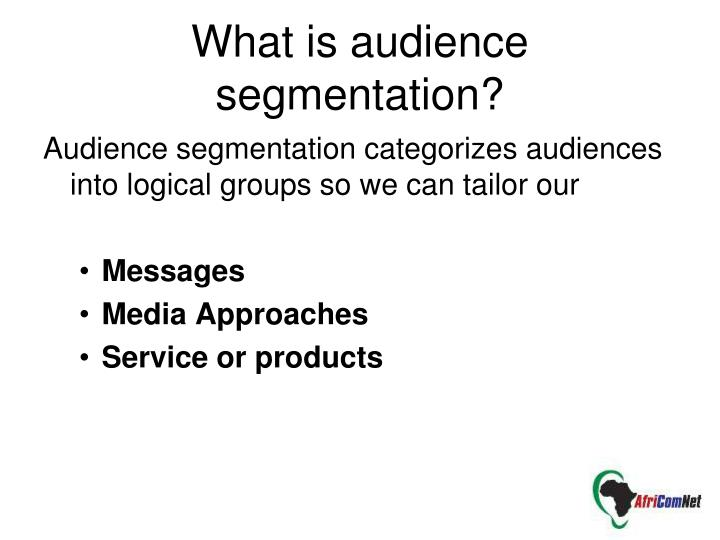 What is audience segmentation?