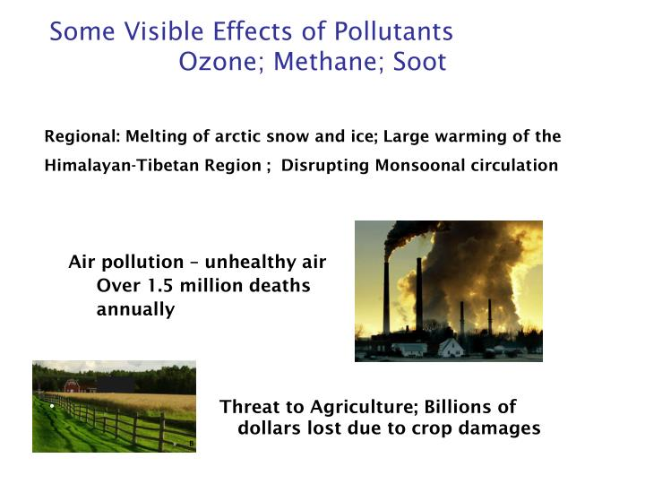 Some Visible Effects of Pollutants
