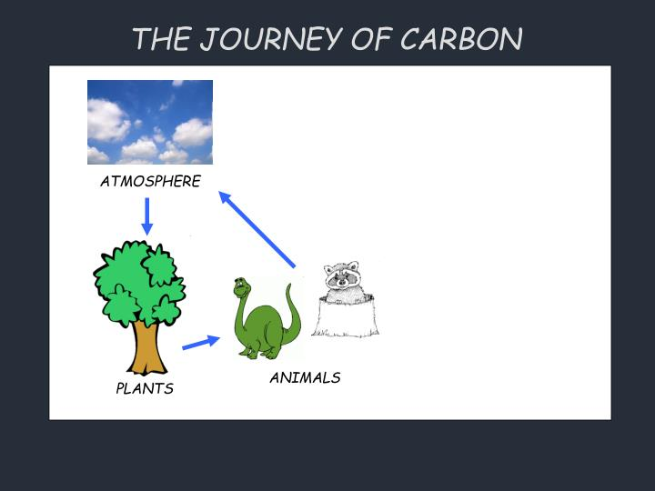 THE JOURNEY OF CARBON