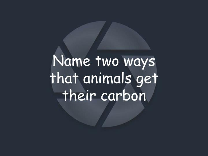Name two ways that animals get their carbon