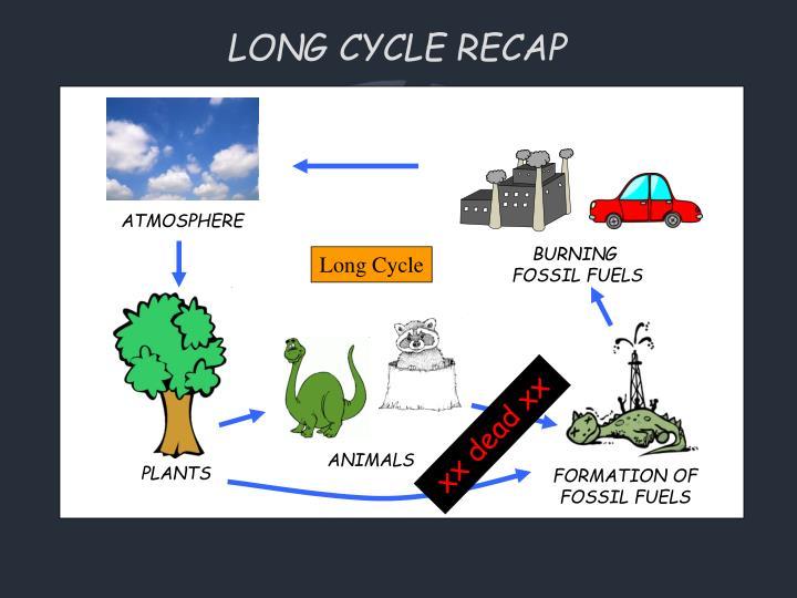 LONG CYCLE RECAP