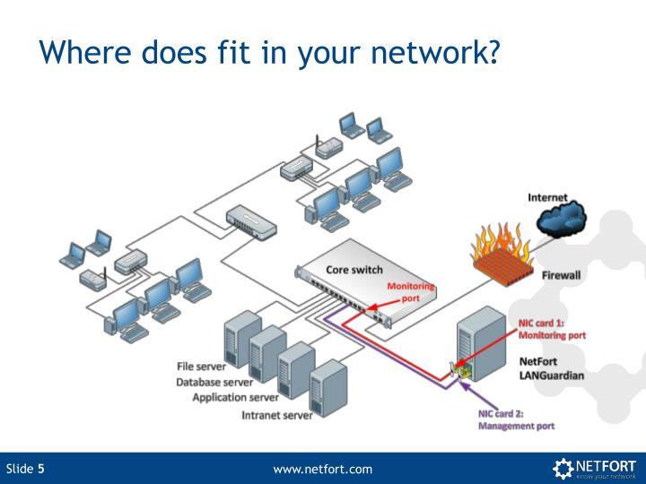 Where does fit in your network?