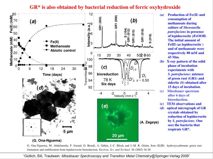 GR* is also obtained by bacterial reduction of ferric oxyhydroxide