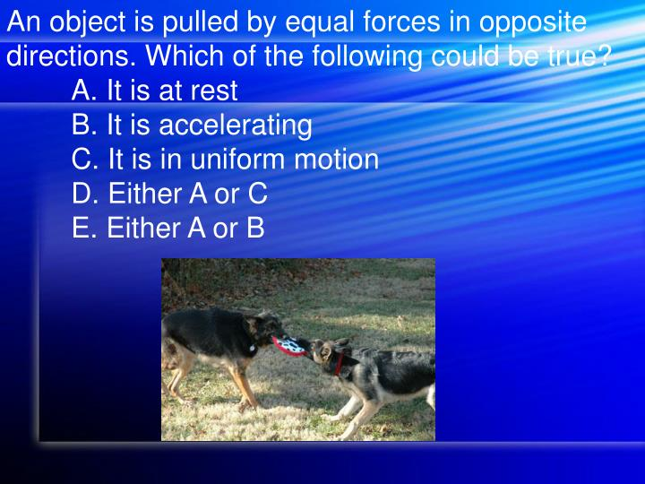 An object is pulled by equal forces in opposite directions. Which of the following could be true?